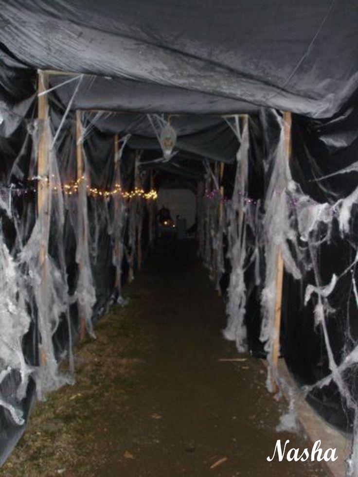 Entrada Hacia El Toldo Para La Fiesta Halloween