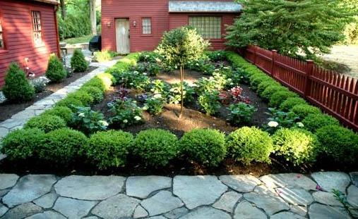 Courtyard garden with boxwood border. Memories of Williamsburg.