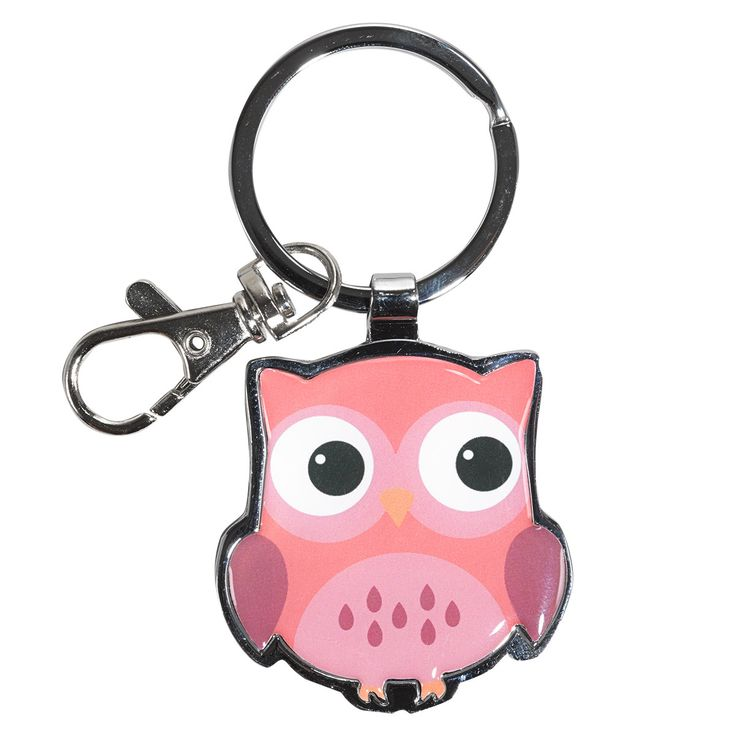 Metal Keyring  Wisdom Sweet  Prov 24:14 Owl  Metal epoxy owl keyring with Scripture stamped on the back.  Wisdom is sweet to your soul. Proverbs 24:14.  PRICE: R50 per Keyring.