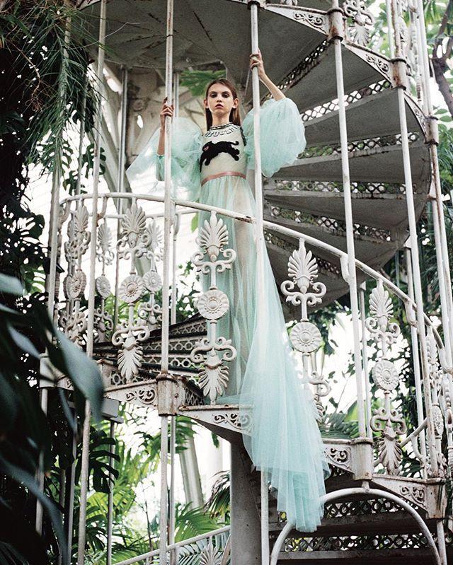 """ドールライクなイットモデル、モリー・ベアが、ロンドンの名所キューガーデンを舞台にロマンティクな浮遊感漂う秋冬のドレスを纏う👗写真は、10月28日(金)発売の12月号掲載ストーリー「白昼夢のファンタジー」から。  It model @molllsbair in dramatic autumn/winter dresses at Kew Gardens in London. This photo is from a fashion story """"TELL ME YOUR DREAMS"""" on VOGUE JAPAN December issue. Photographed by @michal_pudelka Styled by @#sarajanehoare Hair by @philippetholimet Makeup by @lauradomini2 Casting by #davidsteven #voguejapan #decemberissue"""