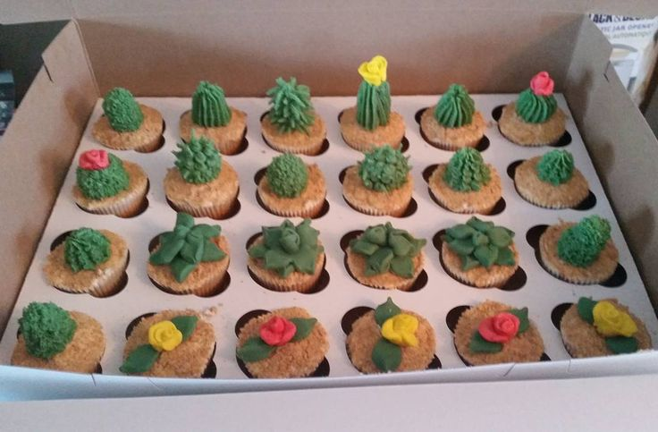 Cactus cupcakes for a Mexican themed bridal shower! #cactus #cacti #cupcakes…