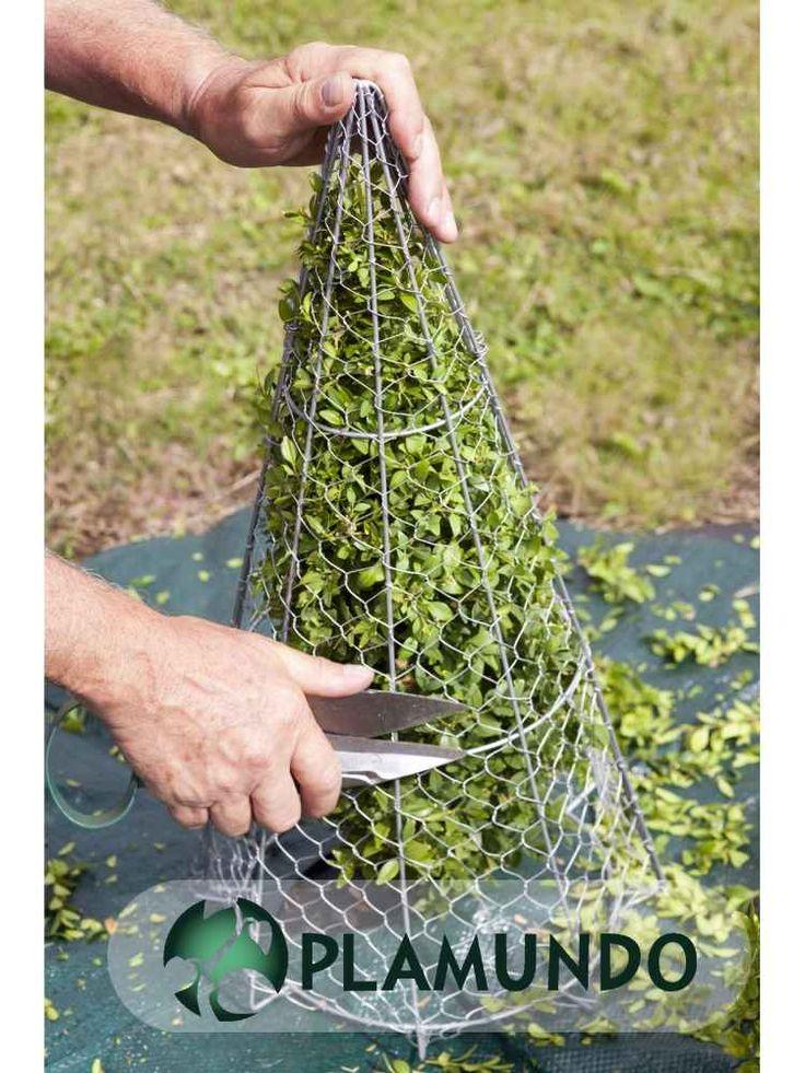 formschnitt schablone kegel von burgon ball plamundo garten shop formschnitt topiary. Black Bedroom Furniture Sets. Home Design Ideas