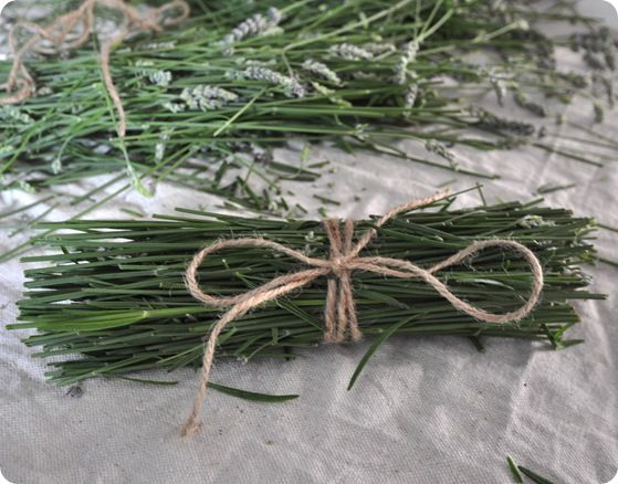 DIY:  Dried Lavender Stem Bundles - tie lavender stems with jute & dry.  Great idea for a campfire. The stems smell just as good as the flowers - put the bundles in baskets around your home & it will smell awesome!