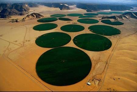 Irrigation en carrousel, Wadi Rum, région de Ma'an, Jordanie (29°36' N – 35°34' E). Ce carrousel d'arrosage autopropulsé restitue aux cultures l'eau puisée par forage dans les couches profondes du sous-sol (de 30 m à 400 m), sur des surfaces irriguées de 78 ha, au moyen d'une rampe pivotante munie de buses d'arrosage, longue d'environ 500 m et montée sur des roues de tracteur. En Jordanie, le volume d'eau consommé dépasse celui des réserves renouvelables. Les nappes souterraines sont…