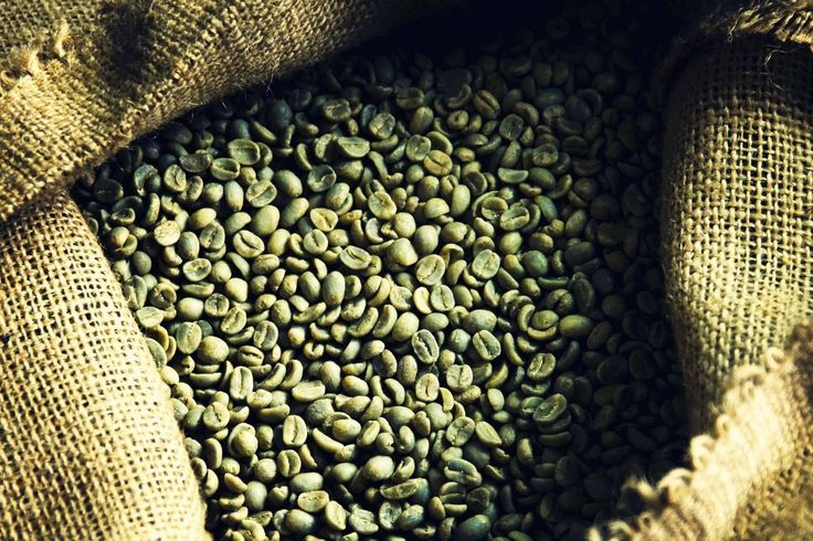 Top 5 Myths about Green Coffee Green coffee, Pure green