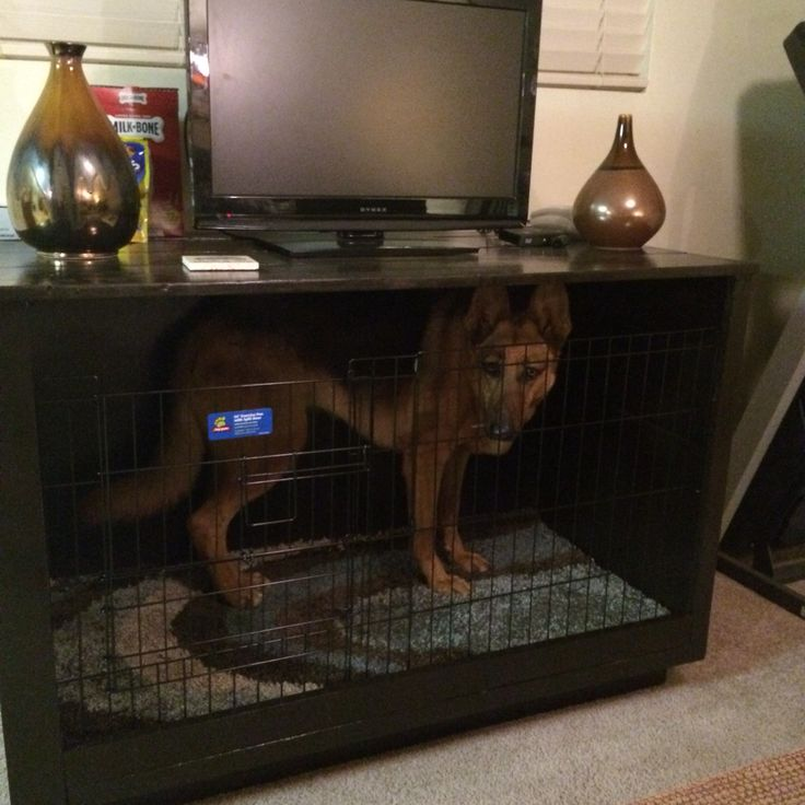 Best 25 crate tv stand ideas on pinterest tv stand for Sofa table dog crate