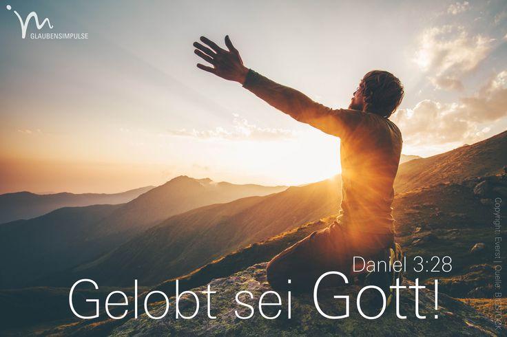 """""""Da rief #Nebukadnezar: »#Gelobt sei der #Gott von #Schadrach, #Meschach und #Abed-Nego! Er hat seinen #Engel gesandt, um diese #Männer zu #retten, die ihm #dienen und sich auf ihn #verlassen. Sie haben mein #Gebot #übertreten und ihr #Leben aufs #Spiel gesetzt, weil sie keinen anderen #Gott #anbeten und #verehren wollten."""" #Daniel 3:28 #glaubensimpulse"""