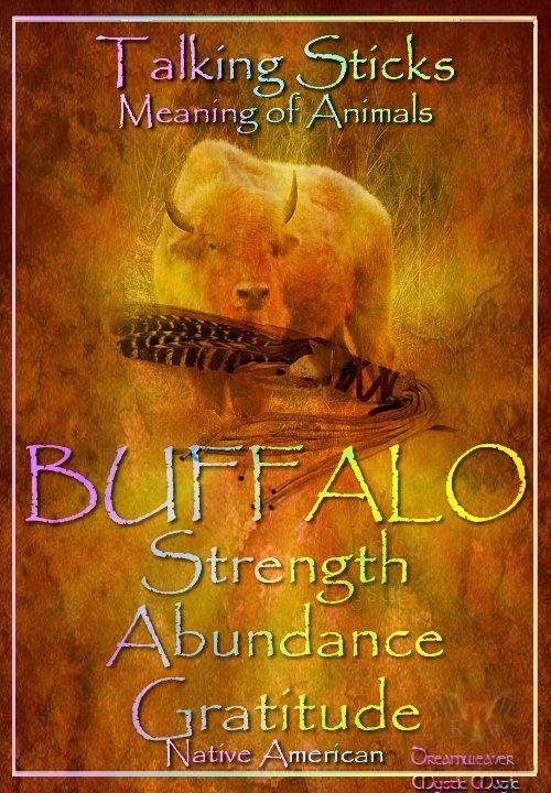 BUFFALO Strength Abundance Gratitude
