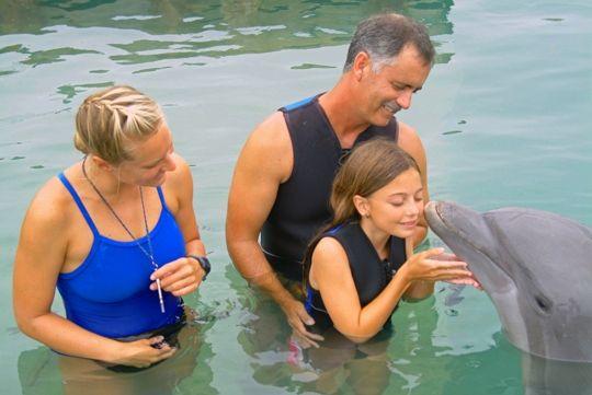Dolphin Encounters at Dolphin Connection - Duck Key, FL - Kid friendly activity reviews - Trekaroo