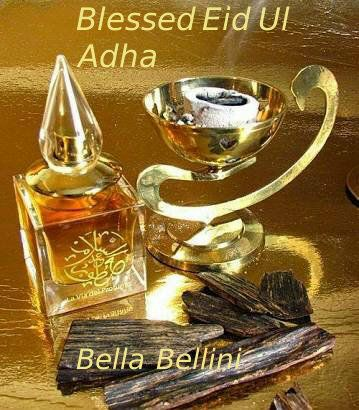 It's a day of rejoice and bliss. It's a day of blessing and peace. It's a day to reflect and ponder. It's a day to #Celebrate together! Eid Mubarak to all you Bella's and Beau's who are #Observing this #Pious_Occasion. ♥Bella♥