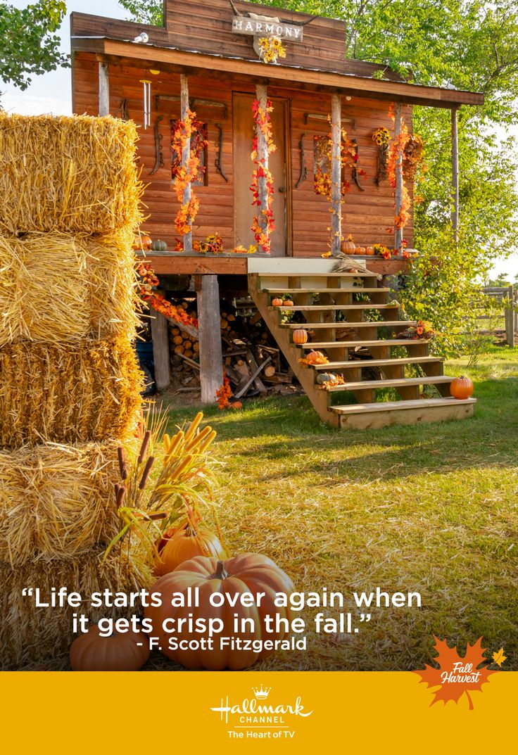 Is visiting a pumpkin patch on your fall harvest bucket