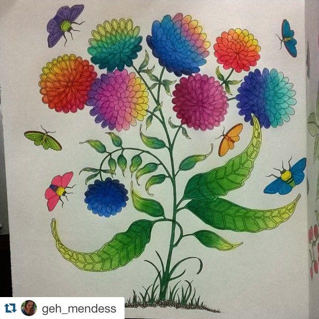 Jardim Secreto Johanna Basford Coloring BookJohanna Secret GardenGarden
