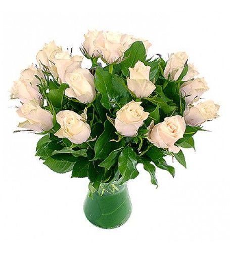 White roses symbolise truth, speaking volumes for innocence, purity, reverence, humility, and silence.