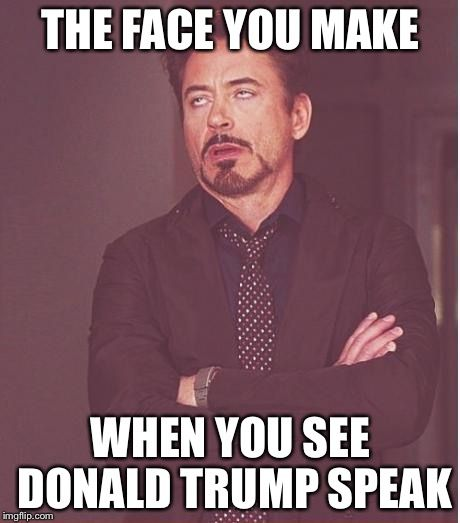 Face You Make Robert Downey Jr | THE FACE YOU MAKE WHEN YOU SEE DONALD TRUMP SPEAK | image tagged in memes,face you make robert downey jr | made w/ Imgflip meme maker