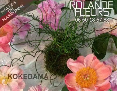 Kokedama 苔玉 réalisés avec amour et passion par Rolande aux halles de Narbonne Languedoc Roussillon / Japanese String Gardens (Kokedama) made with love and passion by Rolande http://www.rolande-fleurs-halles-narbonne.com/