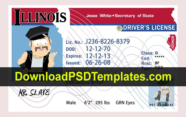 Illinois Drivers License PSD New [Fake IL Template