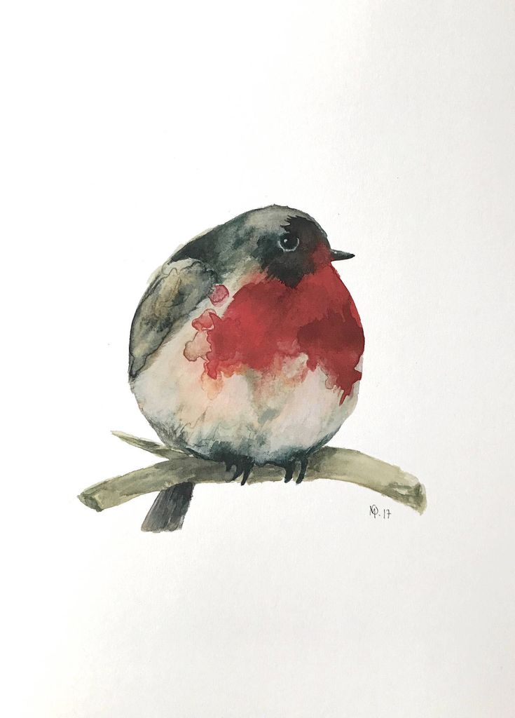 Excited to share the latest addition to my #etsy shop: Watercolor robin bird painting / illustration print.