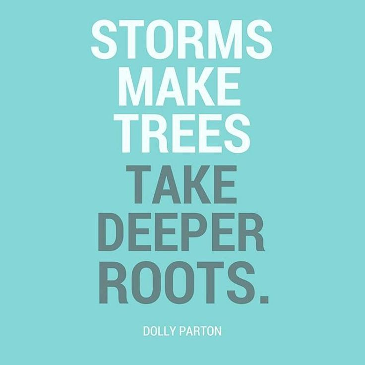 """storms make trees take deeper roots Hi folks i'm back it took me 3 weeks to """"land"""" not literally, of course, but it feels as though my body, mind & soul has never gone through such a major."""