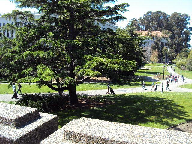 Vista do campus de Berkeley  - no pátio de um de seus restaurantes - luxos da cultura.