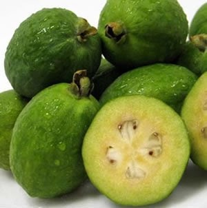 Feijoa is a distant member of the guava family and the flavor of the feijoa is of an aromatic strawberry
