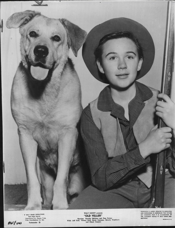 Tommy Kirk with Spike in Walt Disney's 'Old Yeller'. 1957.