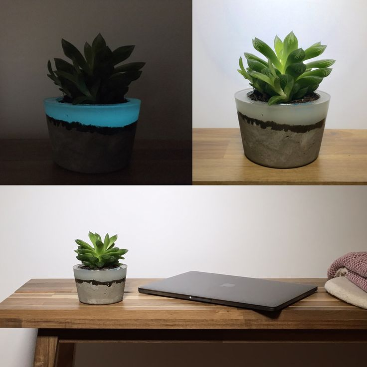 Concrete and resin planter, Glow in the dark