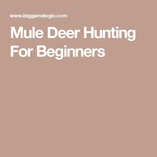 Mule Deer Hunting For Beginners