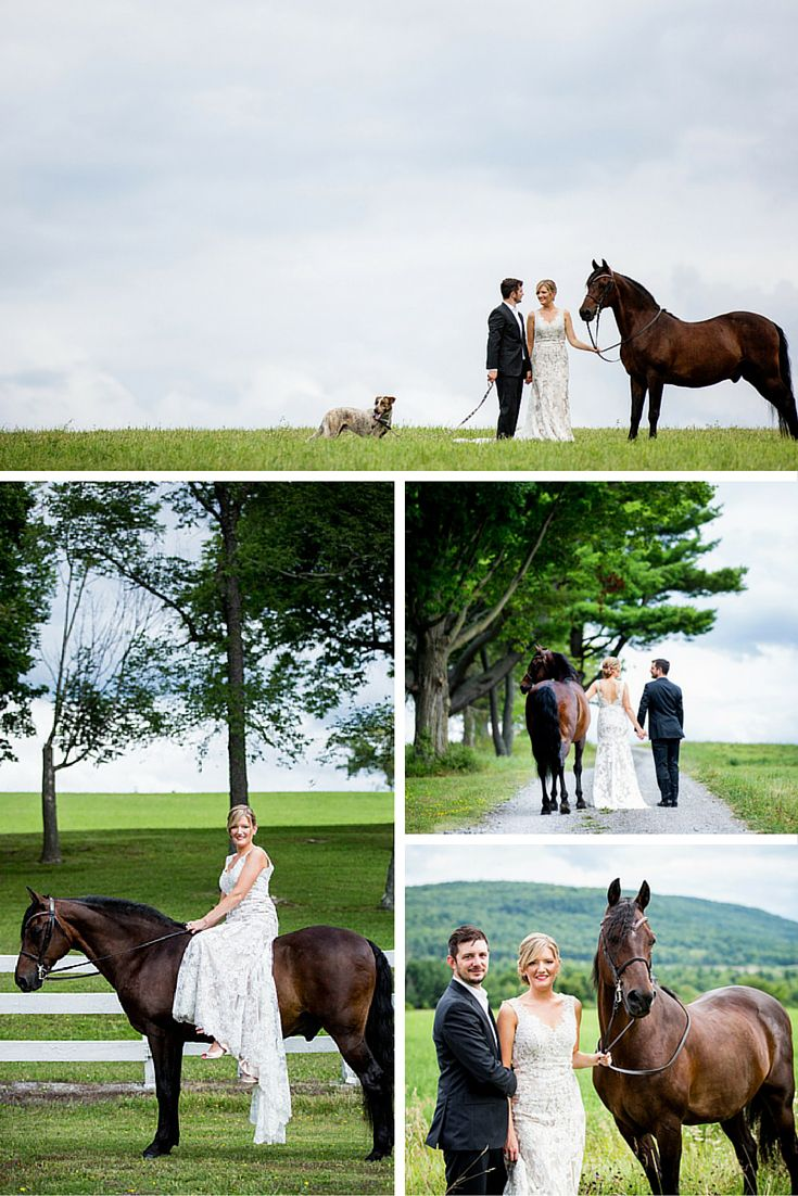 explore horse wedding photos