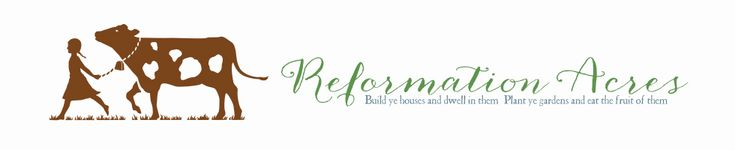 Reformation Acres - Where to start on a new homestead