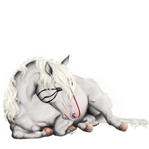Fαded, cavalo de passeio Puro sangue inglês Pardo rato #18 - Howrse