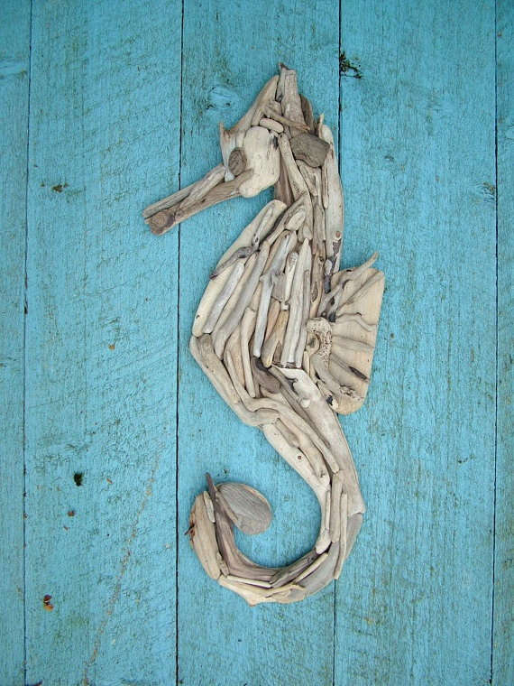 seahorse in driftwood