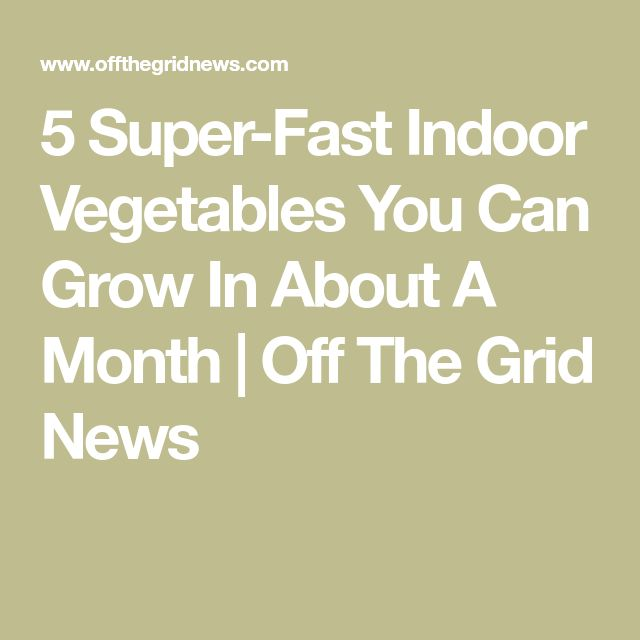5 Super Fast Indoor Vegetables You Can Grow In About A 640 x 480