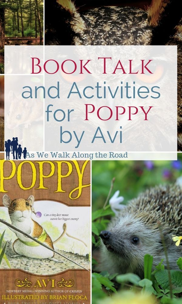 We love the Poppy books by Avi. In this post, I'm sharing literature unit activities for this great kids' read.