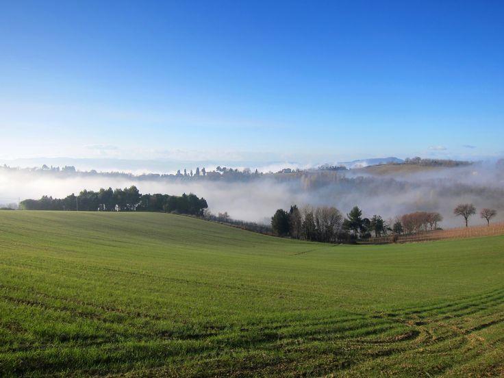 Paesaggio marchigiano. Vista dal Castello di Granarola #destinazionemarche