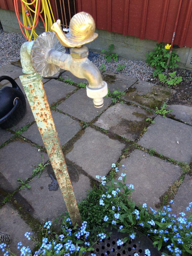 Vattenkranen vid sommartorpet