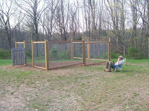 Vegetable Garden Fence Ideas top 25+ best cheap garden fencing ideas on pinterest | cheap