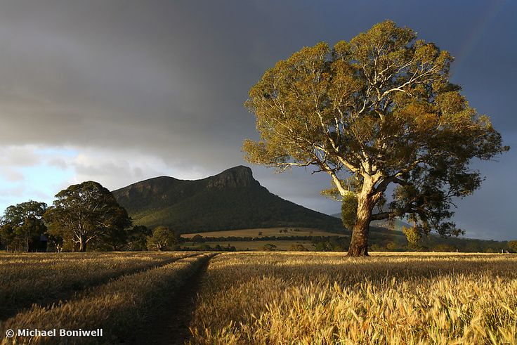 The Grampians National Park, Victoria, Australia.  Photo by Michael Boniwell