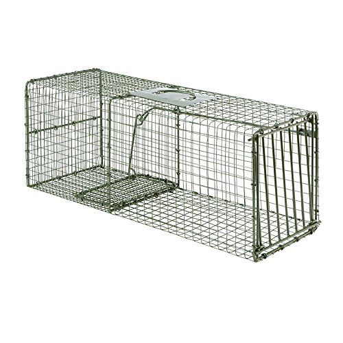 Duke Heavy Duty Armadillo Trap (#1112)   http://huntinggearsuperstore.com/product/duke-heavy-duty-armadillo-trap-1112/