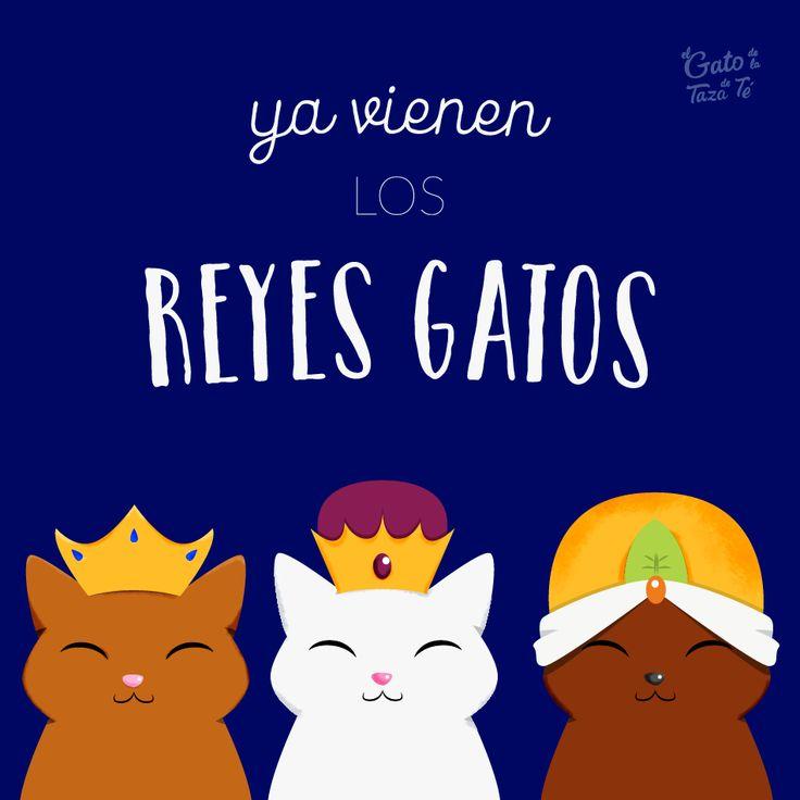 Los reyes gatos, caminito de Belén. Ya traen su  oro pienso y mimos 😻 ❌ Tu tienda de regalos gatuna❌