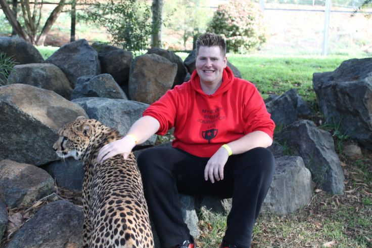 Animal Encounter - Cheetah