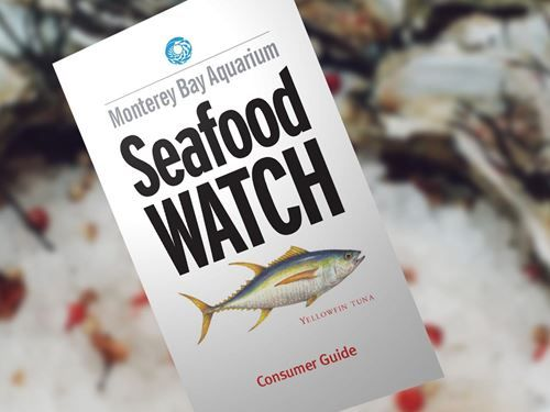 April 2017 Fish Recommendations Consumer Guides || Monterey Bay Aquarium  •Excellent resource our family uses regularly to eat safe, sustainable fish. (We use their app.)