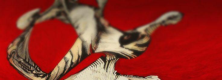 Kim Shon - Creative Pet Project www.creative-pet-project.com