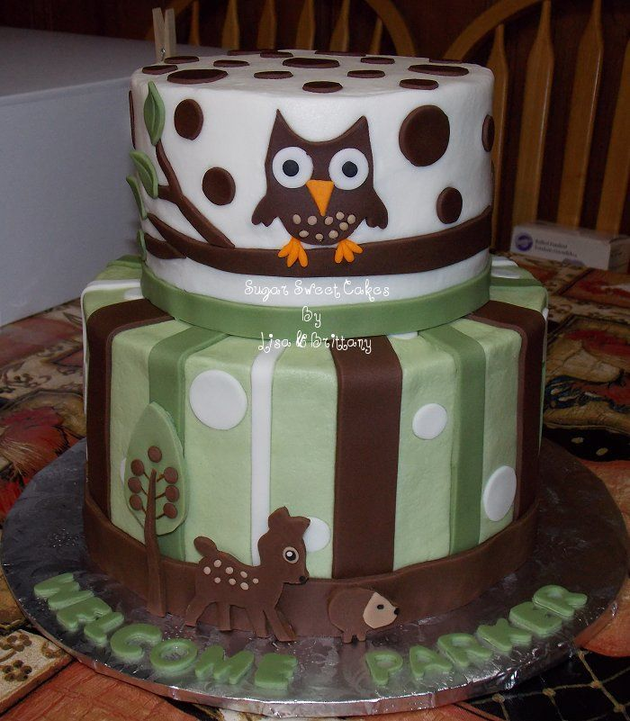 1000+ Images About Baby Animal Cakes On Pinterest