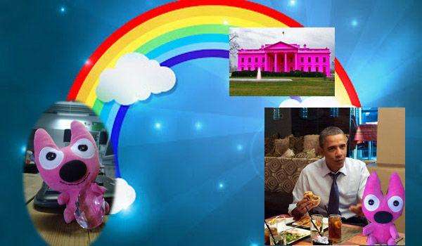"""""""Wat wil ik het liefste? Een ontmoeting met de president van Amerika! Ik klim op mijn lievelingskleur op de regenboog en glij zo de oceaan over naar USA. Barack heeft speciaal voor mij het Witte Huis roze geschilderd. 's Avonds eet ik mee met zijn familie. We eten patat met veel mayonaise, mijn lievelingseten. Dat smaakt extra lekker. De ontmoeting is een eer voor ons beiden. Ik voel me heel erg blij en heel trots. Ja, supermegatrots! Dit geeft mij kracht."""""""