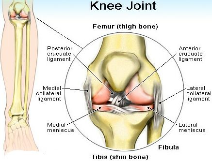 Treatments For Knee Joint Pain Relief