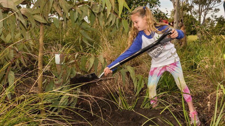 Kids can get involved in this year's National Tree Day.