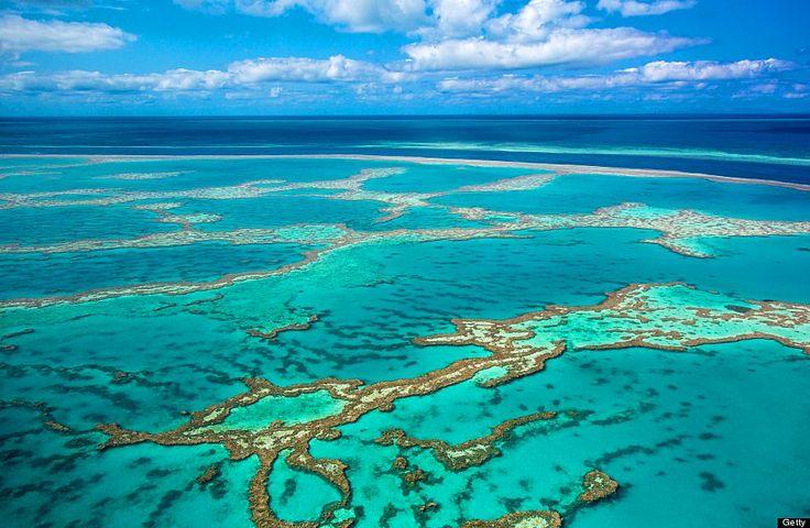 Büyük Bariyer Resifi, Avustralya