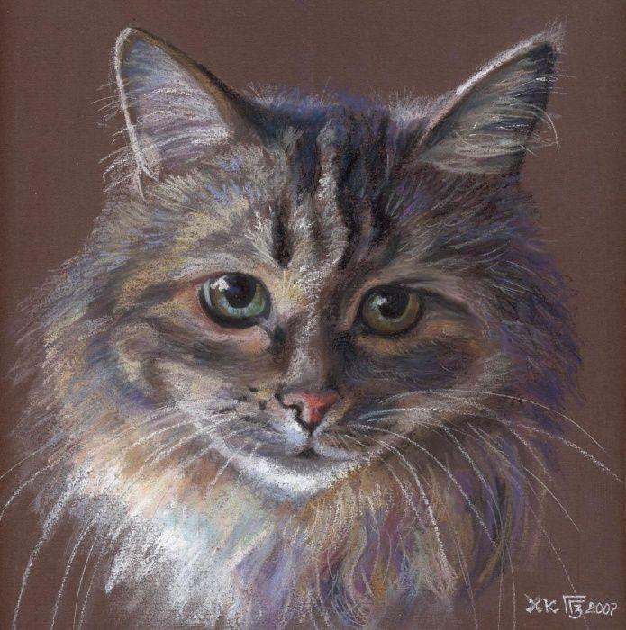 Кот сухой пастелью