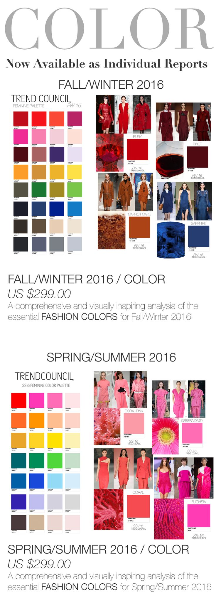 TREND COUNCIL SS & F/W 2016 COLOR