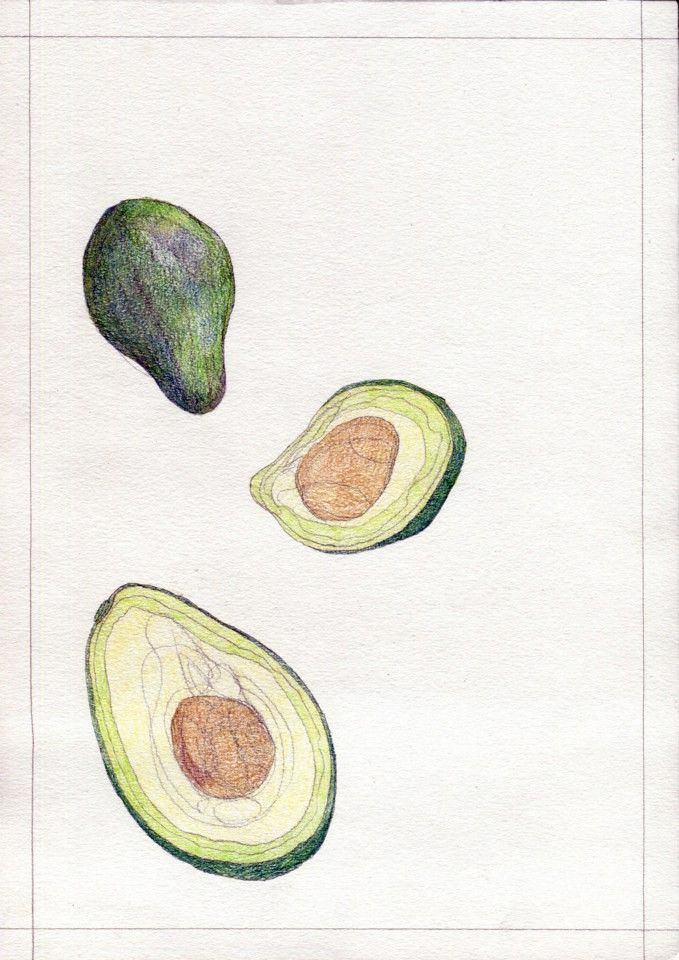 """Avocados"" for KUCHNIA magazine, by AROBAL, 2014"